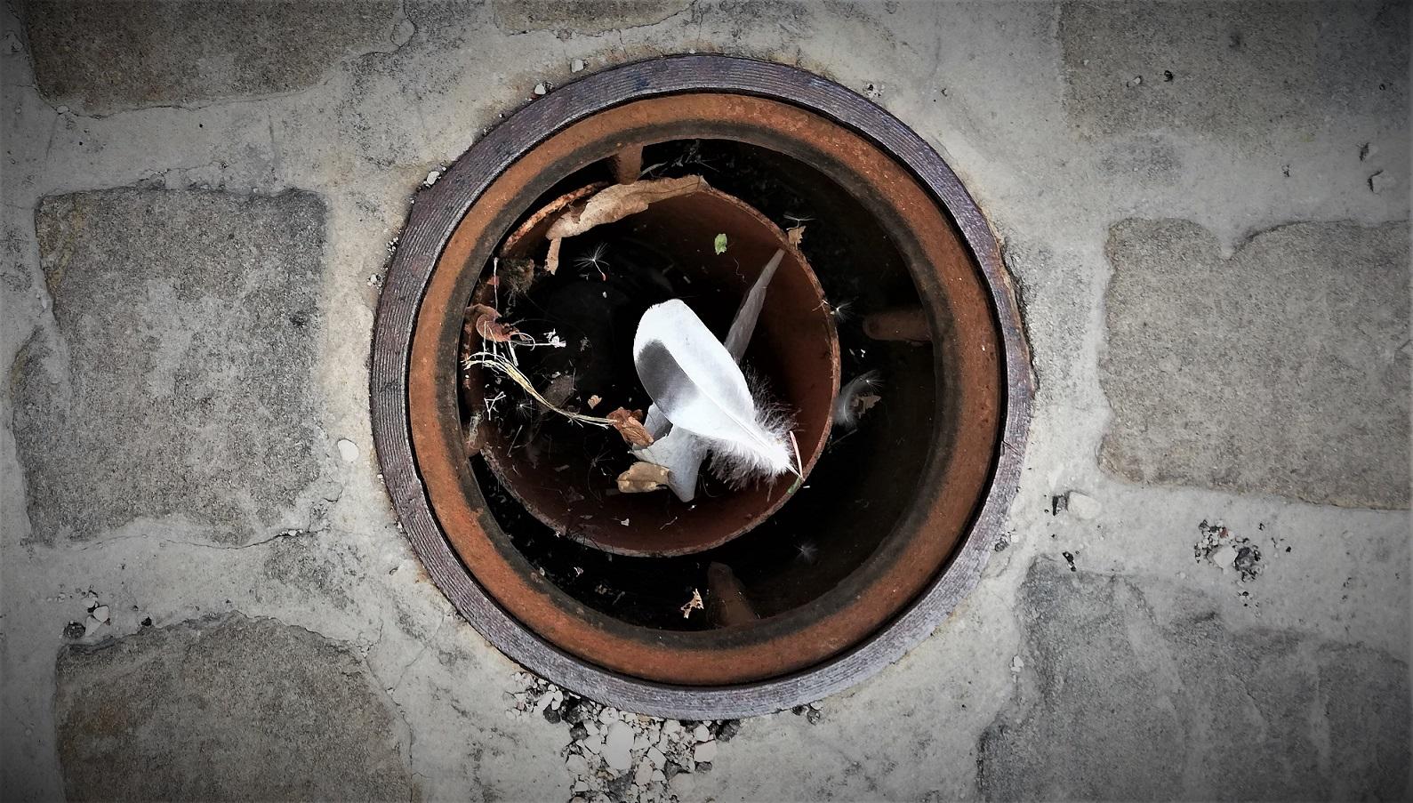 L'Italia del buco. Un buco su una via di un centro storico dove in questo caso ci pensa la piuma sopra la ragnatela a donargli quasi eleganza.