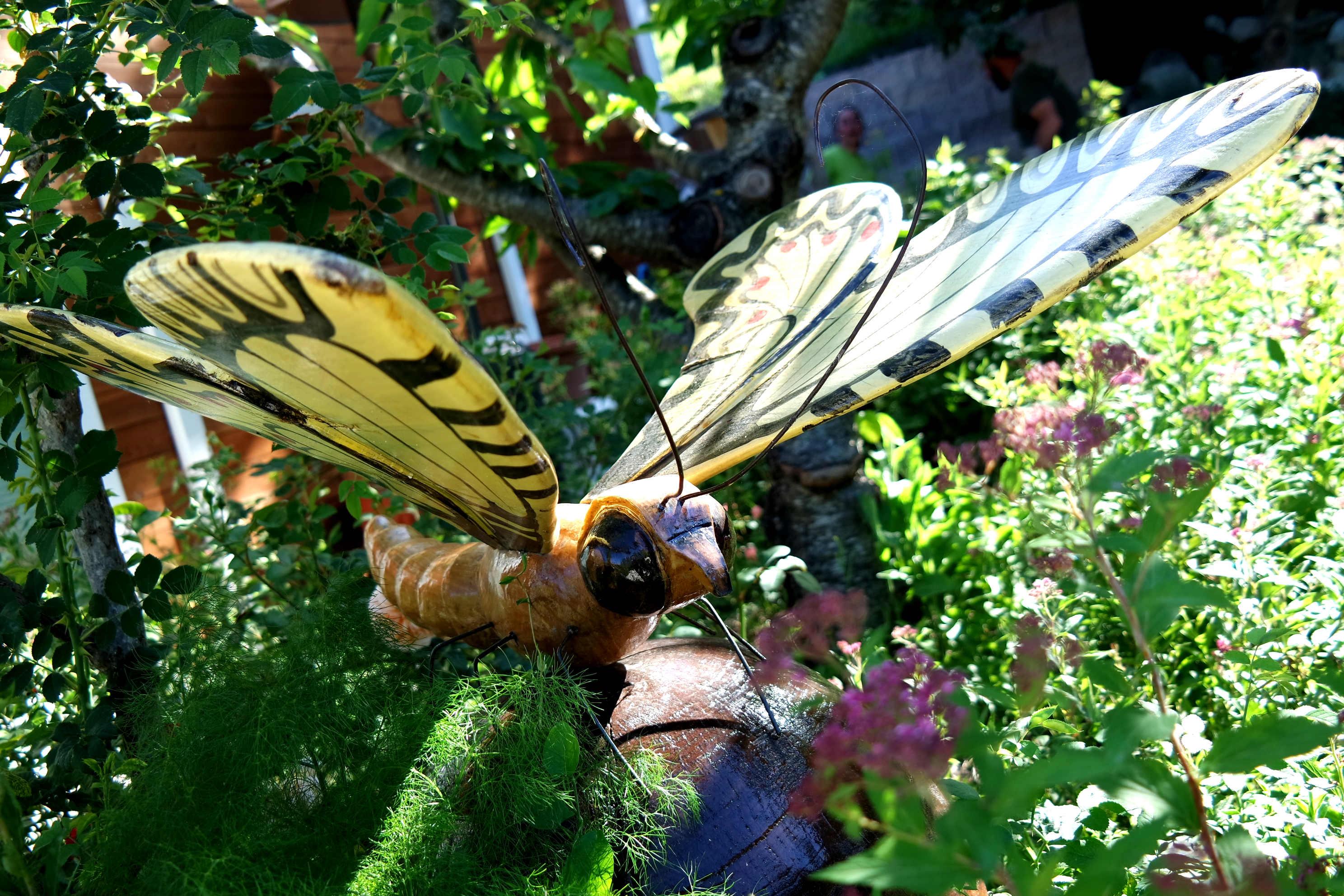 Il giardino dove le farfalle volano alto